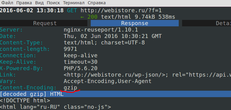 Mitmproxy - сведения об http ответе от сервера