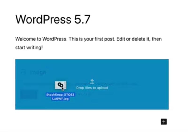 Вышел WordPress 5.7: что нового